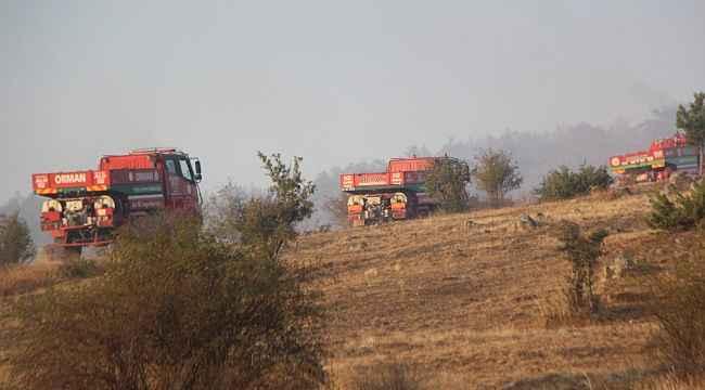 Bolu'da, 40 hektarlık alanda etkili olan orman yangını kontrol altına alındı