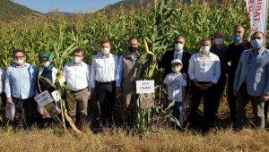 Bursa dünyaya tohum ihraç edecek - Bursa Haberleri