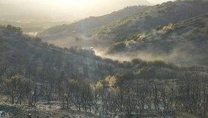 Denizli'deki orman yangını kontrol altına alındı