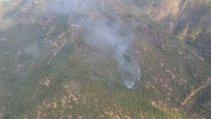 Eskişehir'de 70 hektar ormanlık alan kül oldu