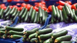 Fiyatı en fazla artan ürün salatalık oldu