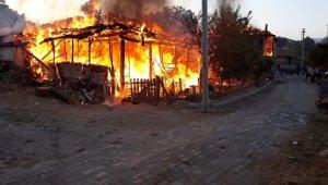 Gediz'deki yangında 2 ev kül oldu
