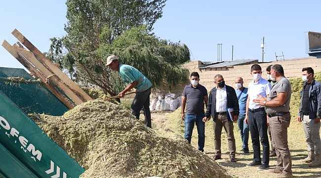 Gürpınar Kaymakamı Kayabaşı hasat çalışmalarını inceledi