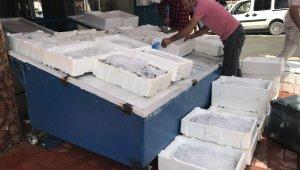 Iğdır'da balıklar tezgahtaki yerini aldı