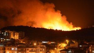 İzmir'deki otluk yangını ile ilgili bir gözaltı