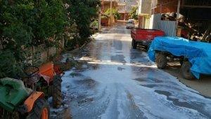 İznik sokakları koronaya karşı dezenfekte ediliyor - Bursa Haberleri
