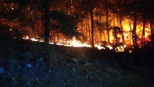 Antalya'daki orman yangını yerleşim yerlerine ulaşmadan kontrol altına alındı