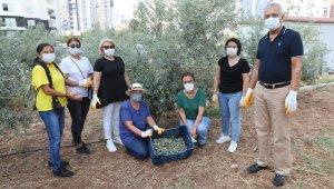 Mezitli'de dayanışma ekonomisi hayat buldu