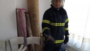 Nevşehir'de eve giren yarasaları itfaiye çıkarttı