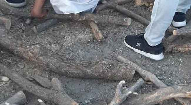 Odun yüklü kamyon yan yattı, 2 çocuk ağır yaralandı