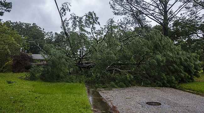 Sally Kasırgası Alabama'yı vurdu
