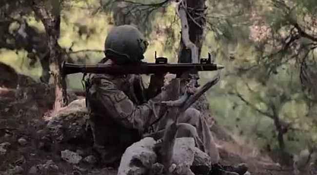 Şırnak'ta MİT ve jandarmanın ortak operasyonunda 2 terörist etkisiz hale getirildi