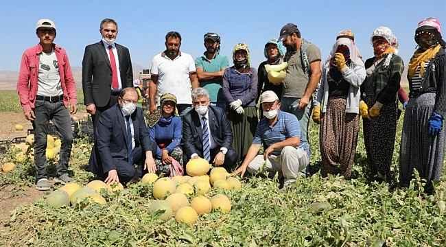 Vali hasat yapan çiftçileri ziyaret etti