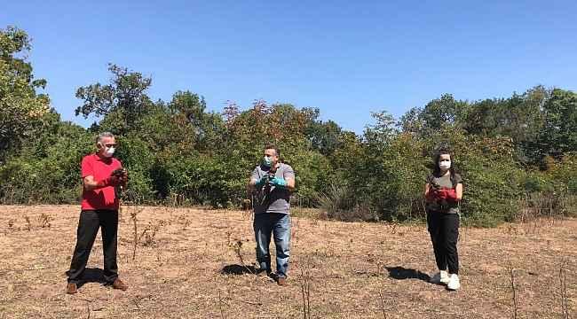 Yaralı tilki ve sansarlar tedavi edilip ormana salındı