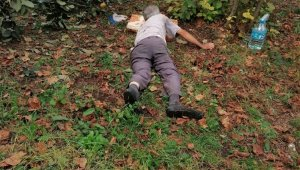 Ağaçtan düşerek yaralandı