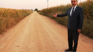 Akçakale kırsalında yol çalışmaları sürüyor