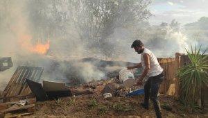 Antalya'da korkutan palmiye yangını