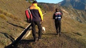 Artvin'de çam sakızı toplamak için ormana giden yaşlı adam ölü bulundu