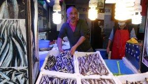 Balık halinde fiyat rekoru hamside