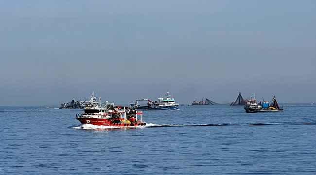 Balıkçı tekneleri sahile akın etti, görsel şölen oluştu