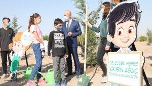 Başkan Çolakbayrakdar, Mevlid Kandili'nde ağaç dikti