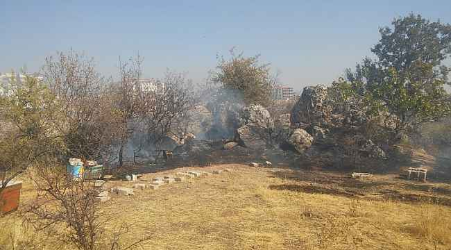Besni'de bahçe yangını ağaçlara zarar verdi