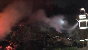 Burhaniye'de ot yangını söndürüldü