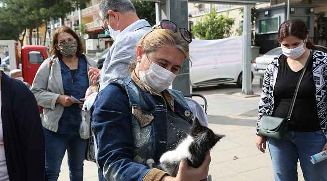 Gaziemir'de sokak hayvanları yeni yuvalarına kavuştu
