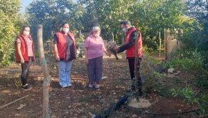 """Kadın çitçiler: """" Devlet teşviklerinden yararlanıp tarımı hep birlikte yaşatalım"""""""