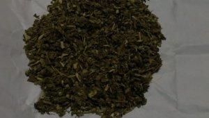 Kastamonu'da uyuşturucu operasyonunda bir şüpheli yakalandı