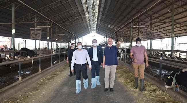 Kaymakam Şahin, Kocagür'deki çiftliği ziyaret etti