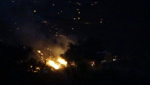 Kozan'daki orman yangını kısmen kontrol altına alındı