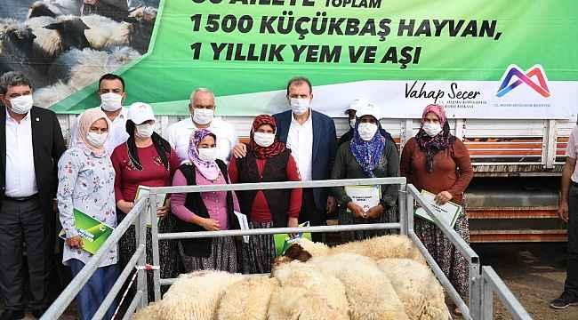 Mersin'de 60 üreticiye bin 500 küçükbaş hayvan desteği sağlandı