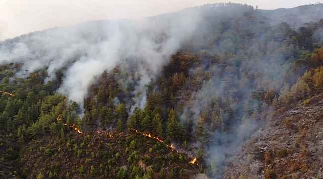 Mersin'deki yangın drone ile havadan görüntülendi