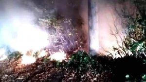 Ordu'da ormanlık alanda yangın