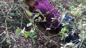 Örgüt lideri 1 yıldır saklandığı ormanda yakalandı