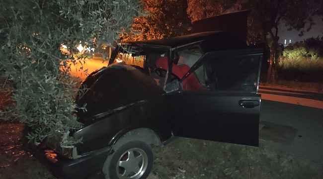 Otomobil zeytin ağacına çarptı: 1 ağır yaralı
