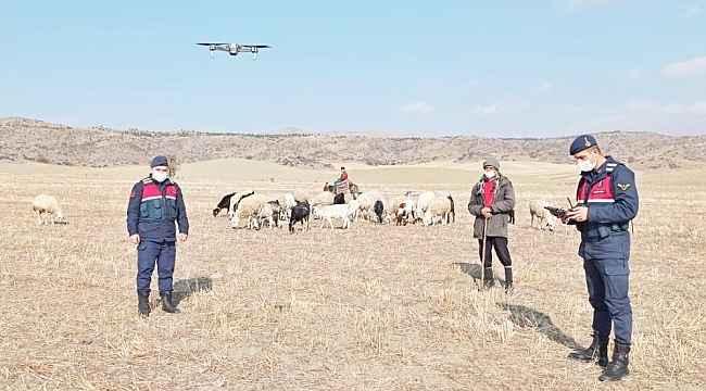 30 küçükbaş hayvan 'drone' yardımıyla bulundu