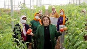Gaziantep'te şifa paketi ile halka sağlık, esnafa destek sağlanacak