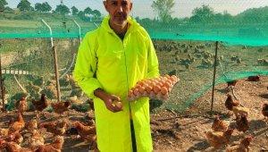 Gezen tavuk yumurtalarına ilgi büyük - Bursa Haberleri