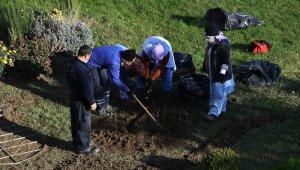 Osmangazi'ye 220 bin kış çiçeği - Bursa Haberleri