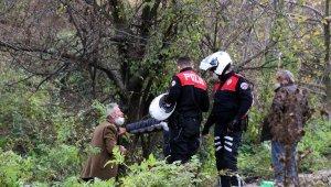 Şehir merkezinde ağaç altındaki eğlenceleri polis gelince son buldu