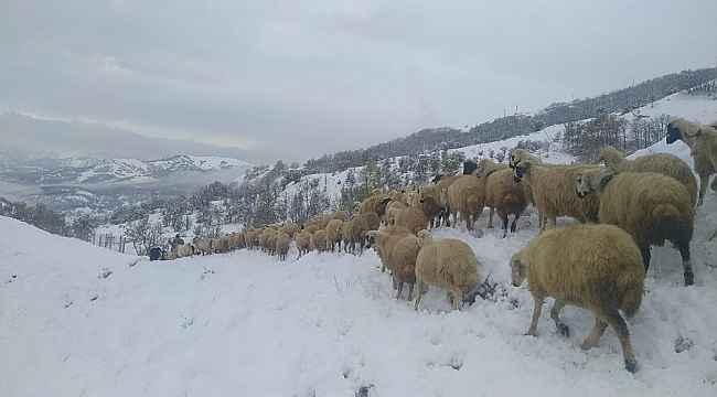 Tunceli'de kar yağışı