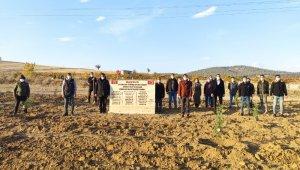 Türkeş'in doğumun gününde 103 fidan toprakla buluştu