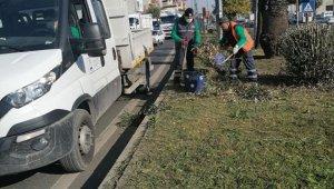 Umurlu'da yeşil alan temizlik çalışmaları devam ediyor