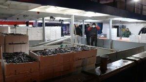 Zonguldak'ta balıkçılar 10 ton hamsi ile limana yanaştı