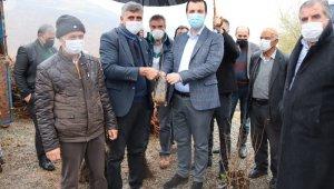 Hazro'da çiftçilere 28 bin adet fıstık, ceviz ve badem fidanı dağıtıldı