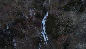 Nemrut Krater Gölü çevresine bir ton yem bırakıldı