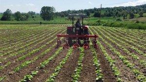 Tarım danışmanı başına 46 bin TL destekleme verilecek
