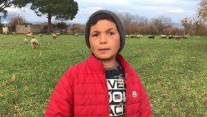 12 yaşındaki küçük çoban videolarındaki diyalogları ile sosyal medyanın yeni fenomeni oldu